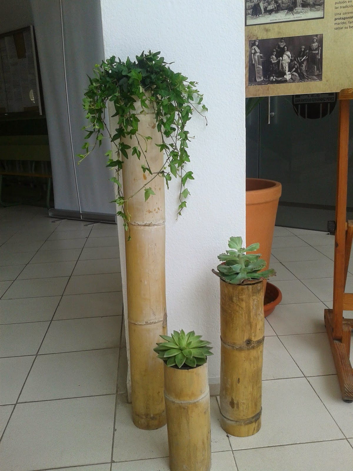 Agraria huerta salama jardines verticales - Jardineras con bambu ...