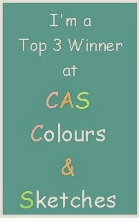CAS-Colour & Sketches blog