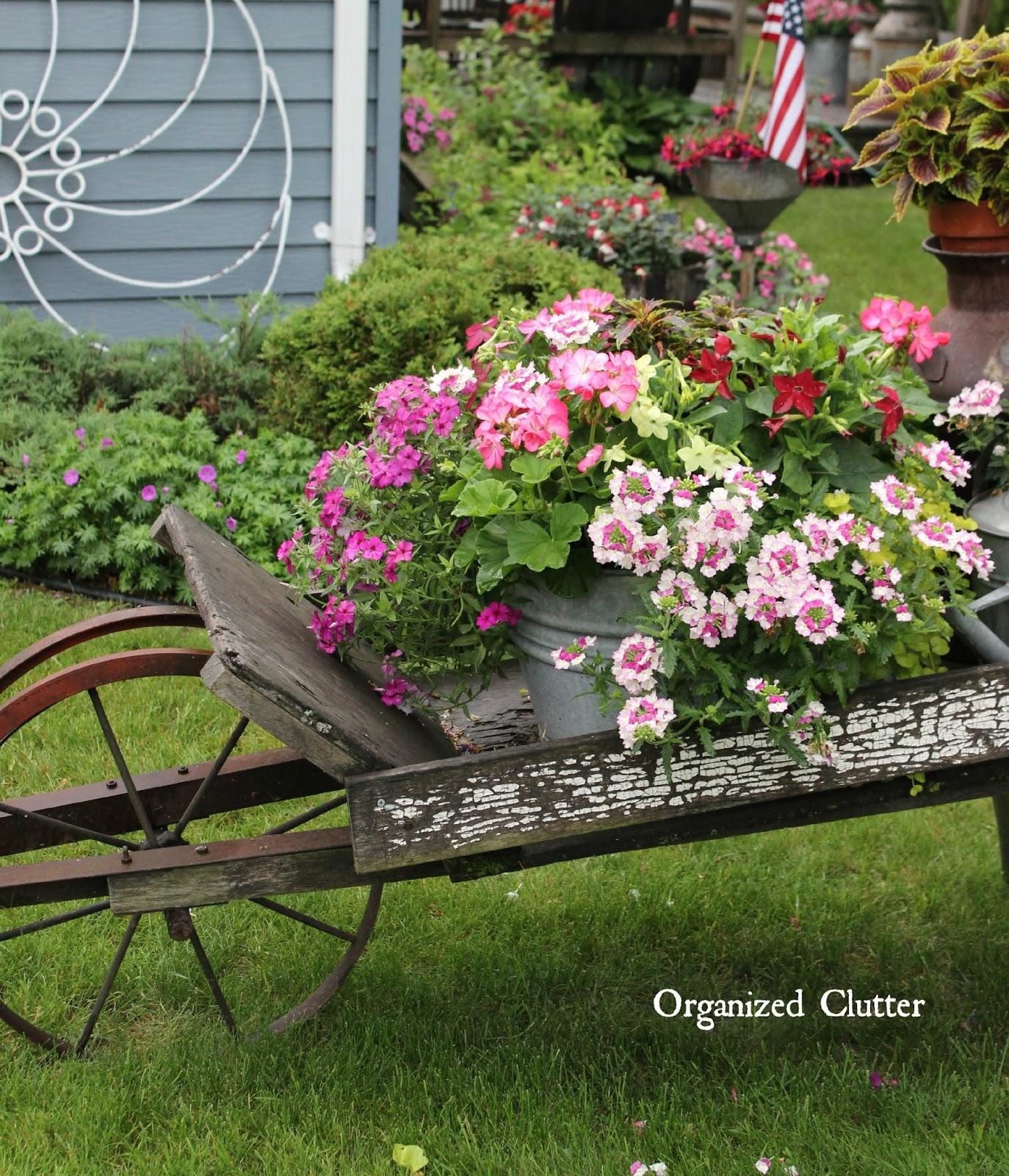rustic garden wheelbarrow 2015 organized clutter - Rustic Garden 2015