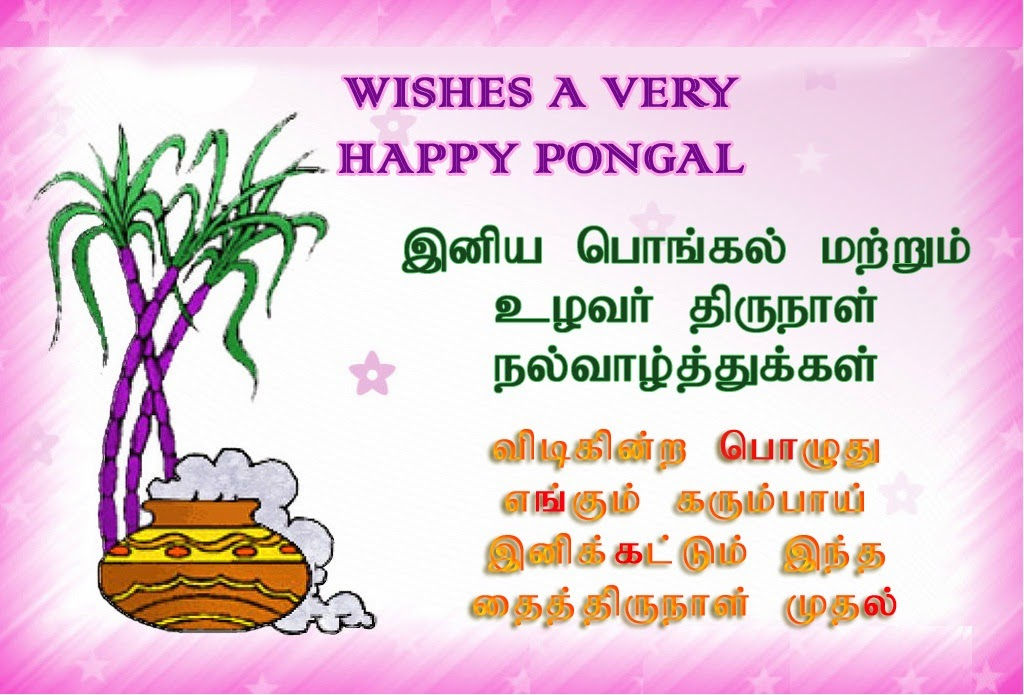 Pongal Messages HD Wallpapers WhatsApp Status In Tamil 2016
