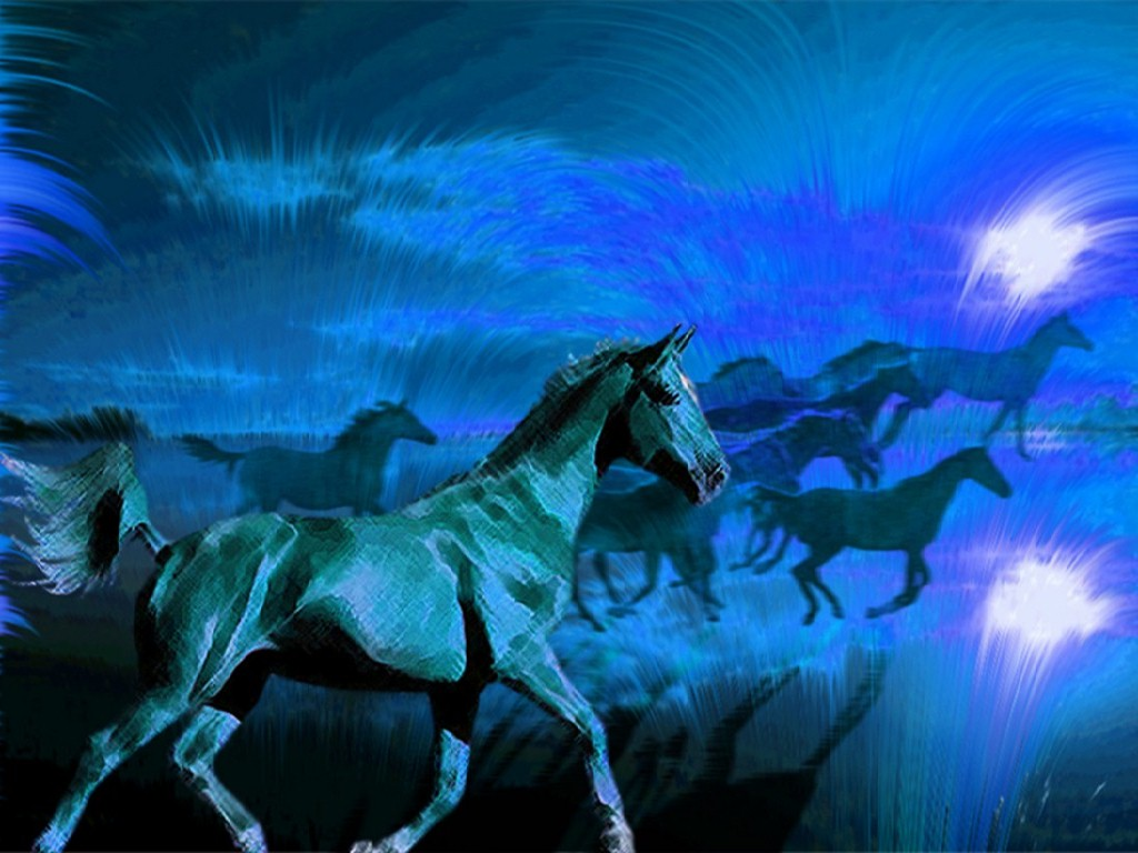 http://1.bp.blogspot.com/-iDUxv7fk-S4/Tnh05-6qg5I/AAAAAAAAAJc/oxCbxUS5L-Q/s1600/Black+wild+horses+%25281%2529.jpg