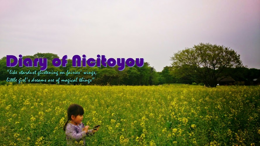 Diary of Nicitoyou