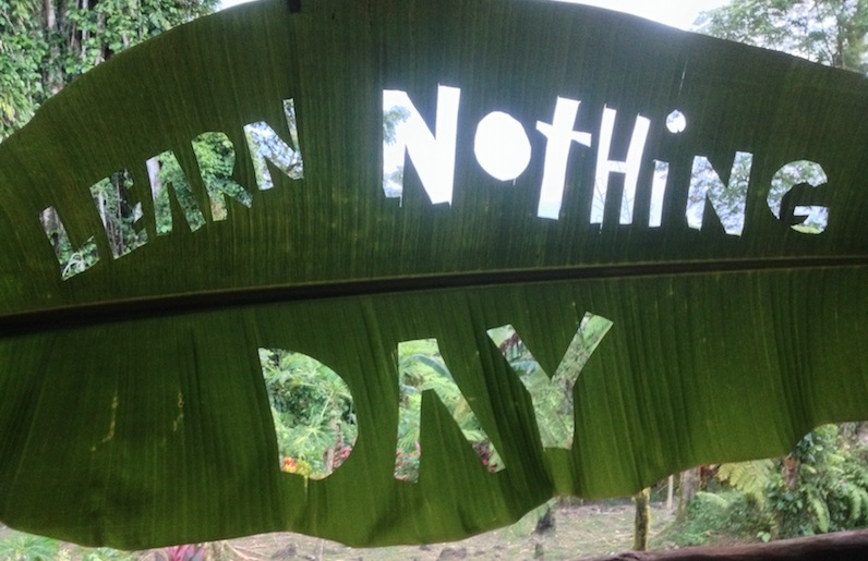 Learn Nothing Day