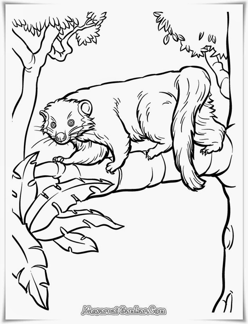 Download Free Printable Kids Coloring Pages On MewarnaiGambar.com