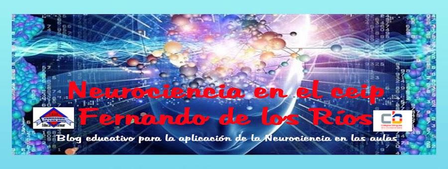 Neurociencia en el Ceip. Fernando de los Ríos