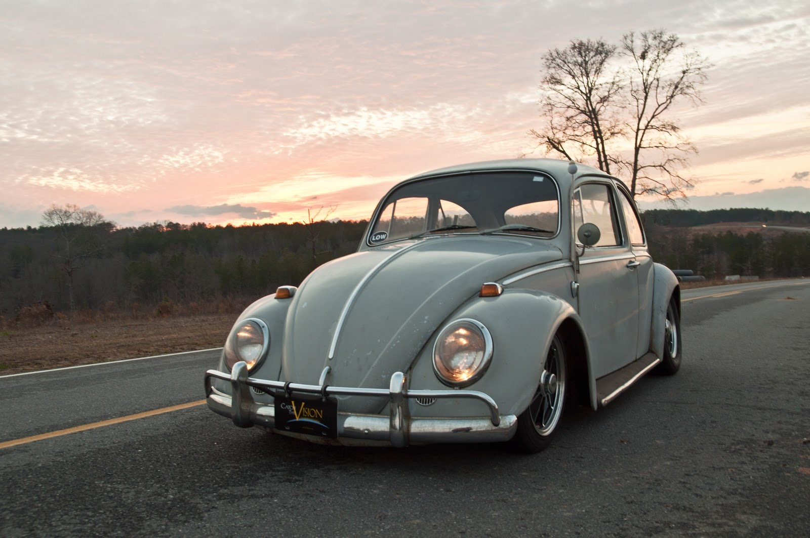 Otis - my '65 Beetle DSC_0060
