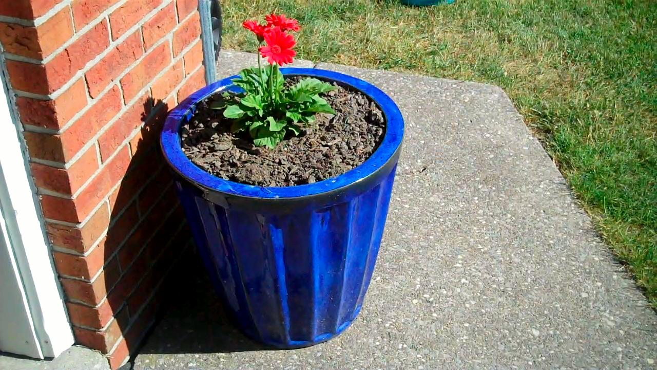 6 ways to recycle and reuse in the garden eve of reduction - Coffee grounds six practical ways to reuse them ...