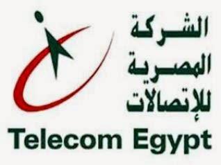 فاتورة التليفون الارضي عبر الشركة المصرية للاتصالات شهر 4 ابريل 2014