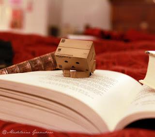 danbo dengan buku