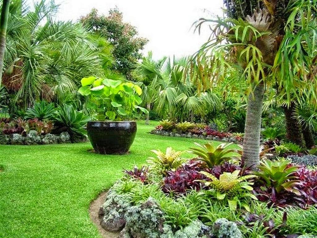 flores tropicais jardim : flores tropicais jardim:As Palmeiras e Heliconias, que lembram as Bananeiras, possuem