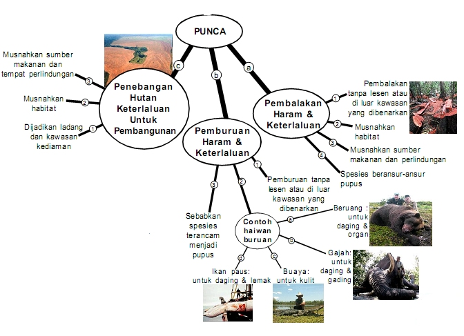 Langkah-langkah Melindungi Spesies Terancam