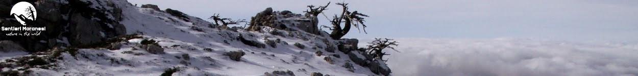 """Serra delle Ciavole """"la diretta"""" dalla cresta Ovest"""