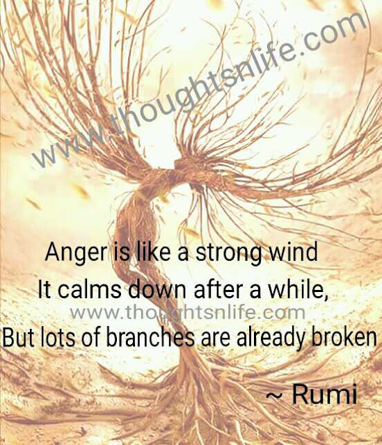 rumi quotes about anger