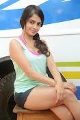 Sheena shahabadi sizzling pics-thumbnail-6