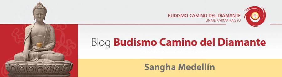 BudismoMedellin