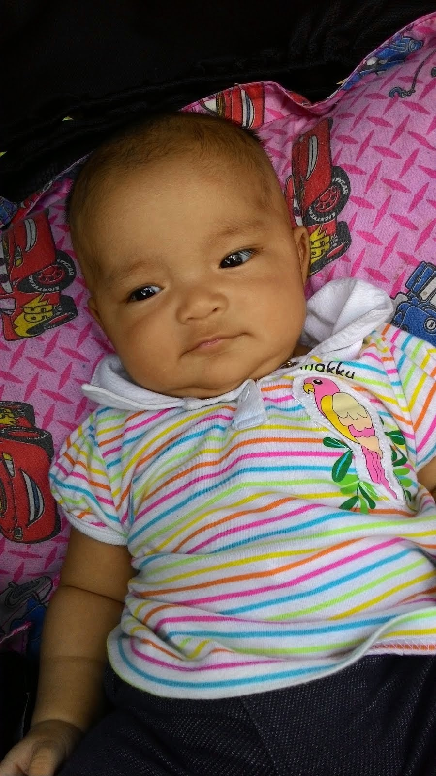 Nur Qaseh Amani