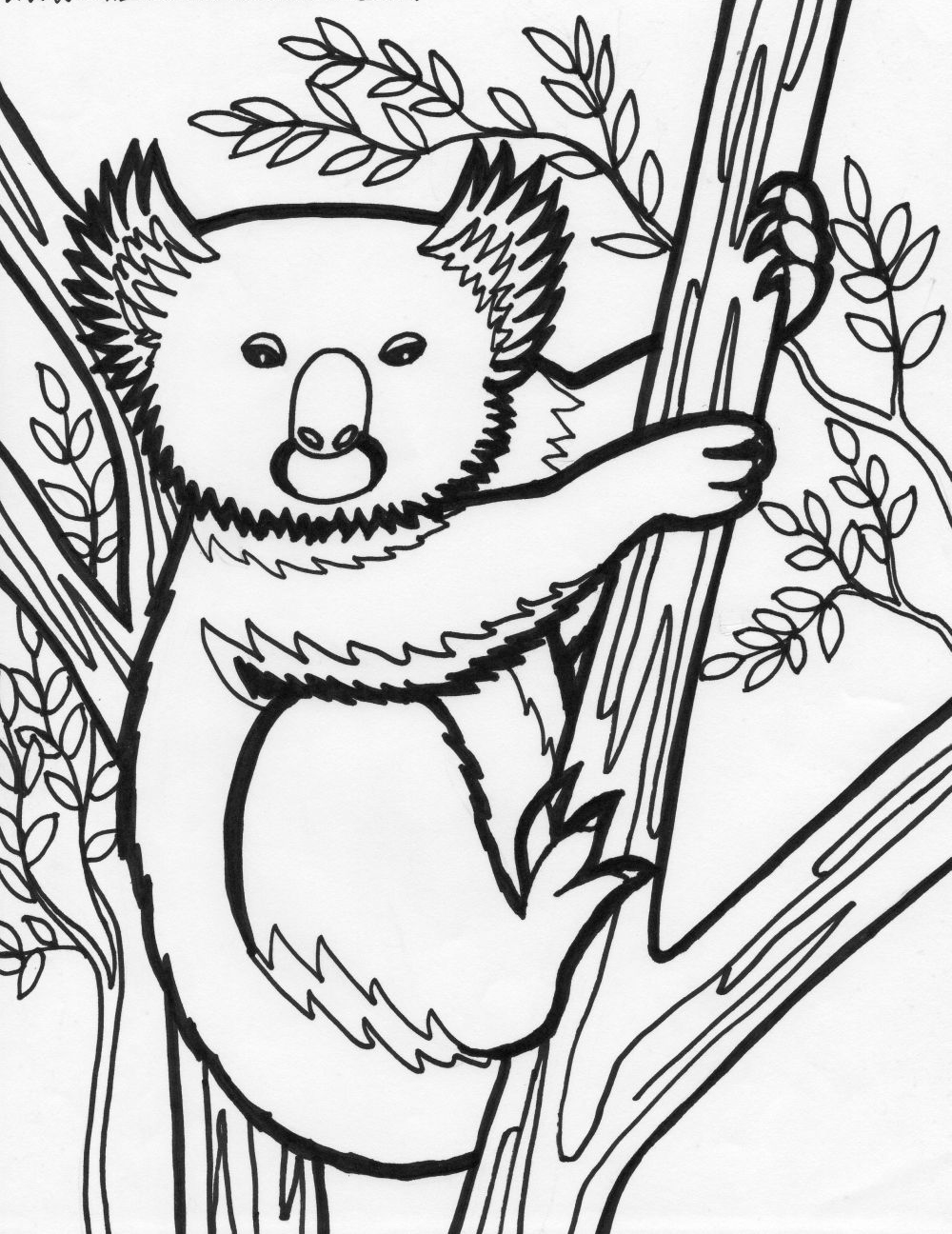 Animal Coloring Pages Koala and