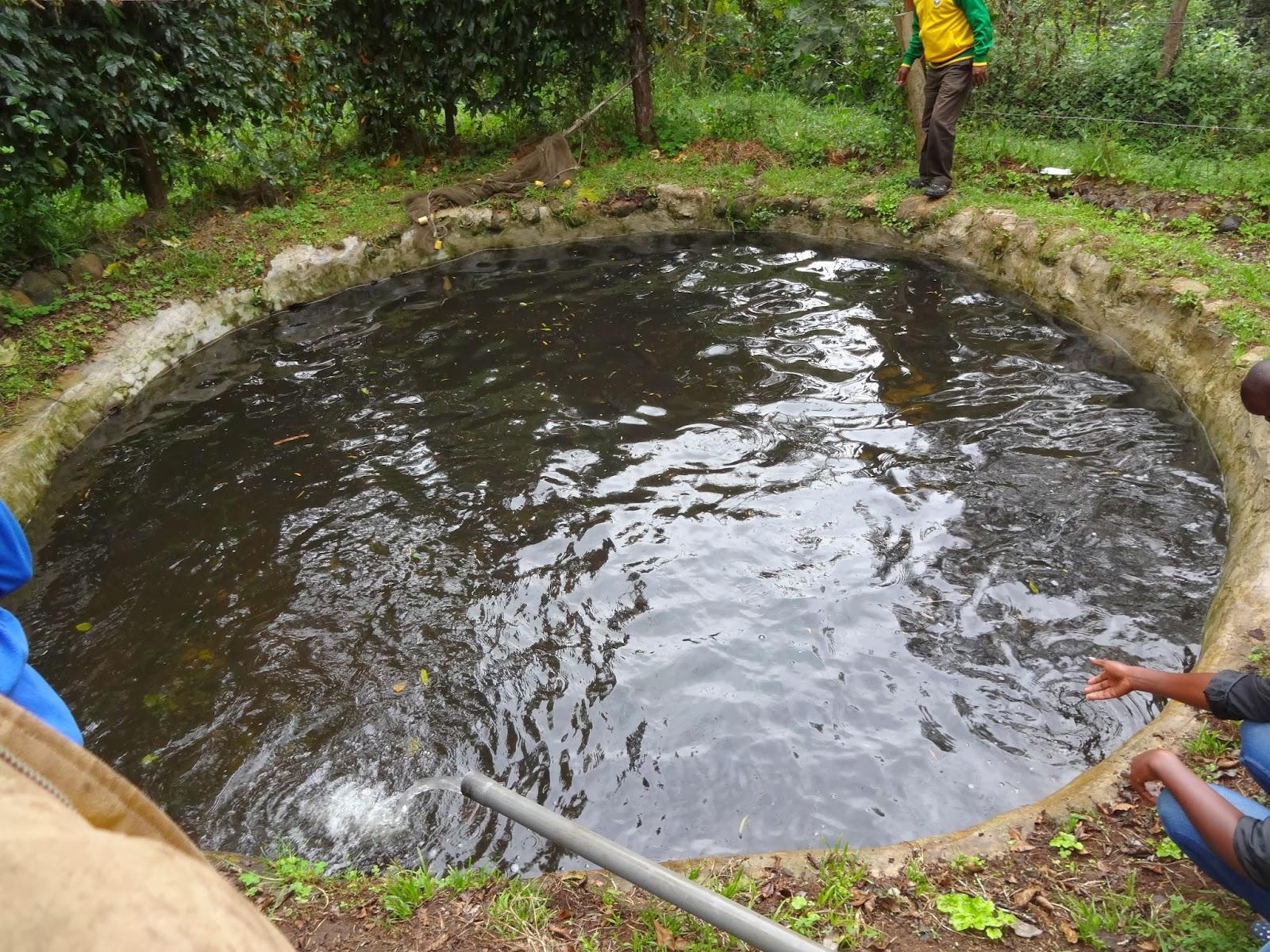 Developments In Rural Areas Across The World Fishing On Mount Kenya