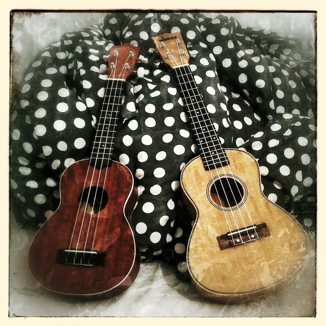 Makala and Moselele Concert ukes