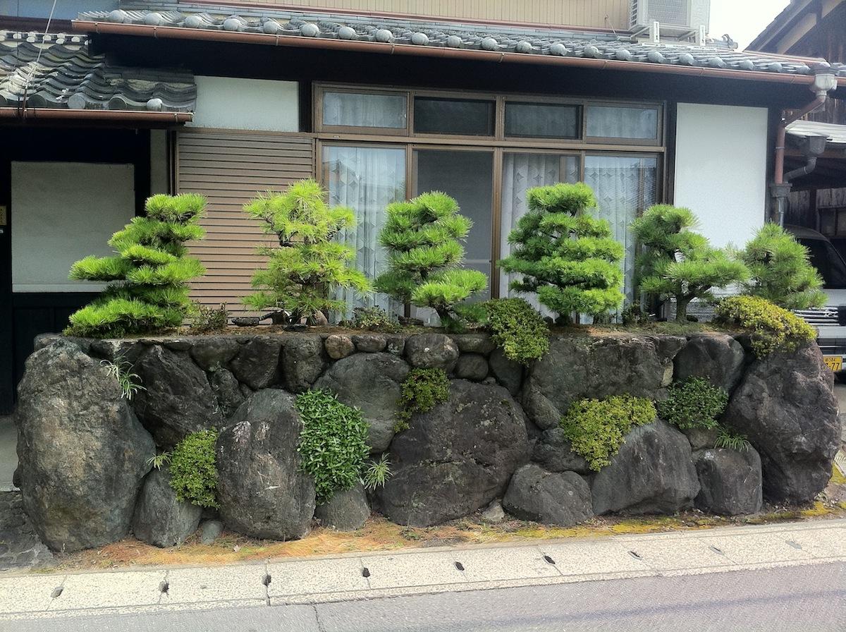 Noels Garden Blog A hard look at the Japanese garden