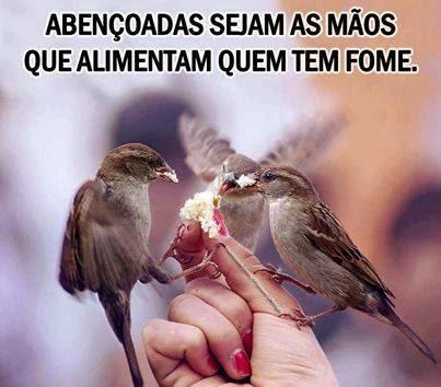 Descrição da imagem: Mão de mulher segura um pedaço de pão. Três passarinhos se alimentam do pão pousado em sua mão. Sobre a imagem lê-se: Abençoadas sejam as mãos que alimentam quem tem fome.