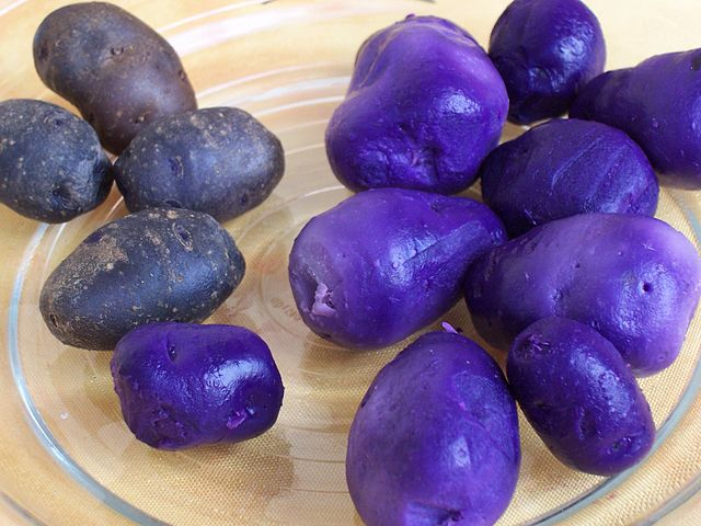 Different Colors of Potatoes - Purple 'n Violet Potatoes