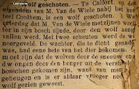 Wolf in Oost-Vlaanderen in januari 1888