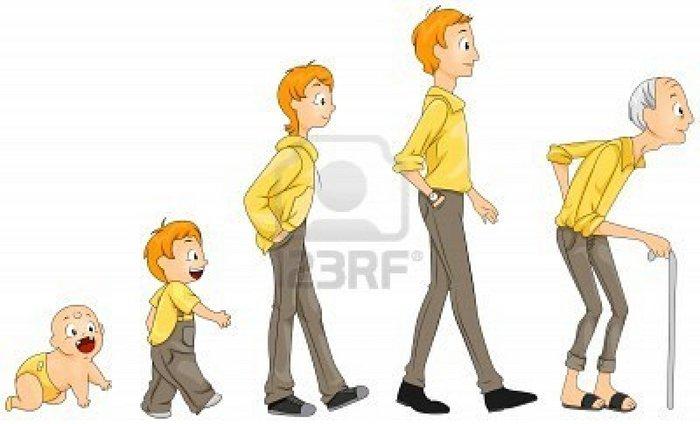 Dibujo de diferentes etapas del desarrollo humano - Imagui