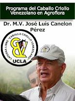 Vídeo del Caballo Criollo Venezolano
