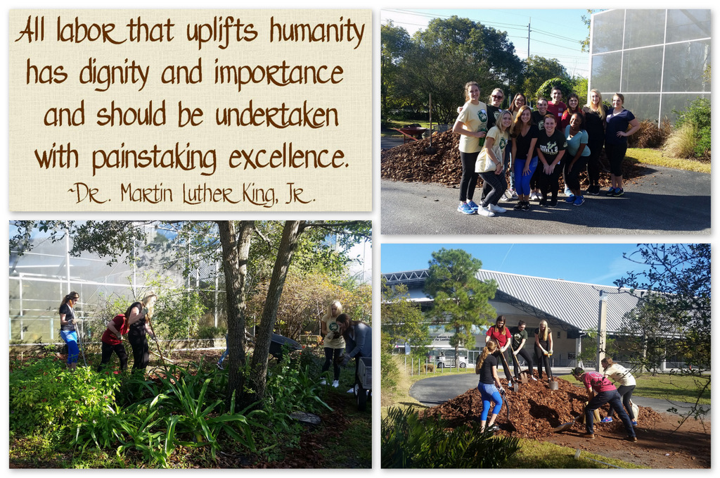 Over The Course Of About Two And Half Hours, These Students Moved And  Spread 20 Cubic Yards Of Pine Bark March To Give Our Outdoor Butterfly  Garden A ...