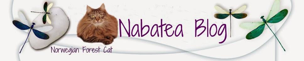 Nabatea Bosques de Noruega