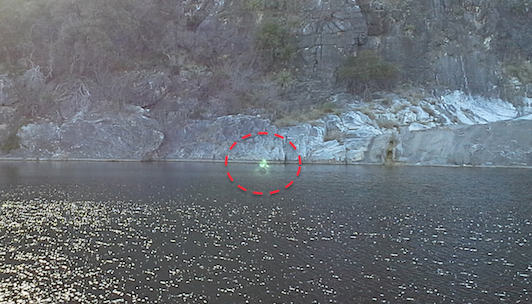 Alien Creature Caught Walking On Water, UFO Sightings