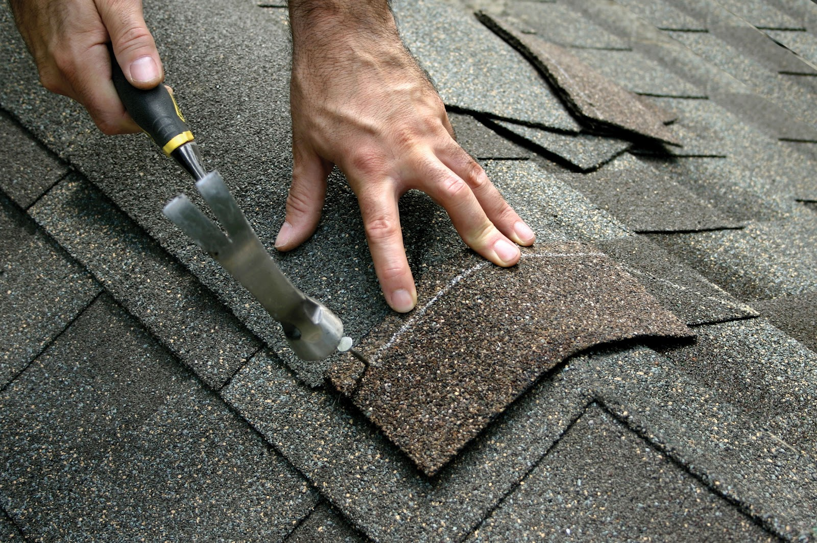 To avoid pricey water and mold damage to your asphalt shingle roofs ...