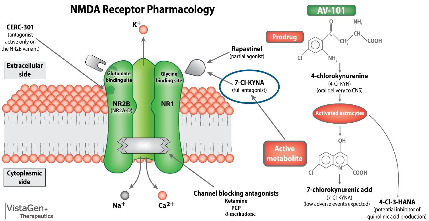 nmda receptor chronische pijn