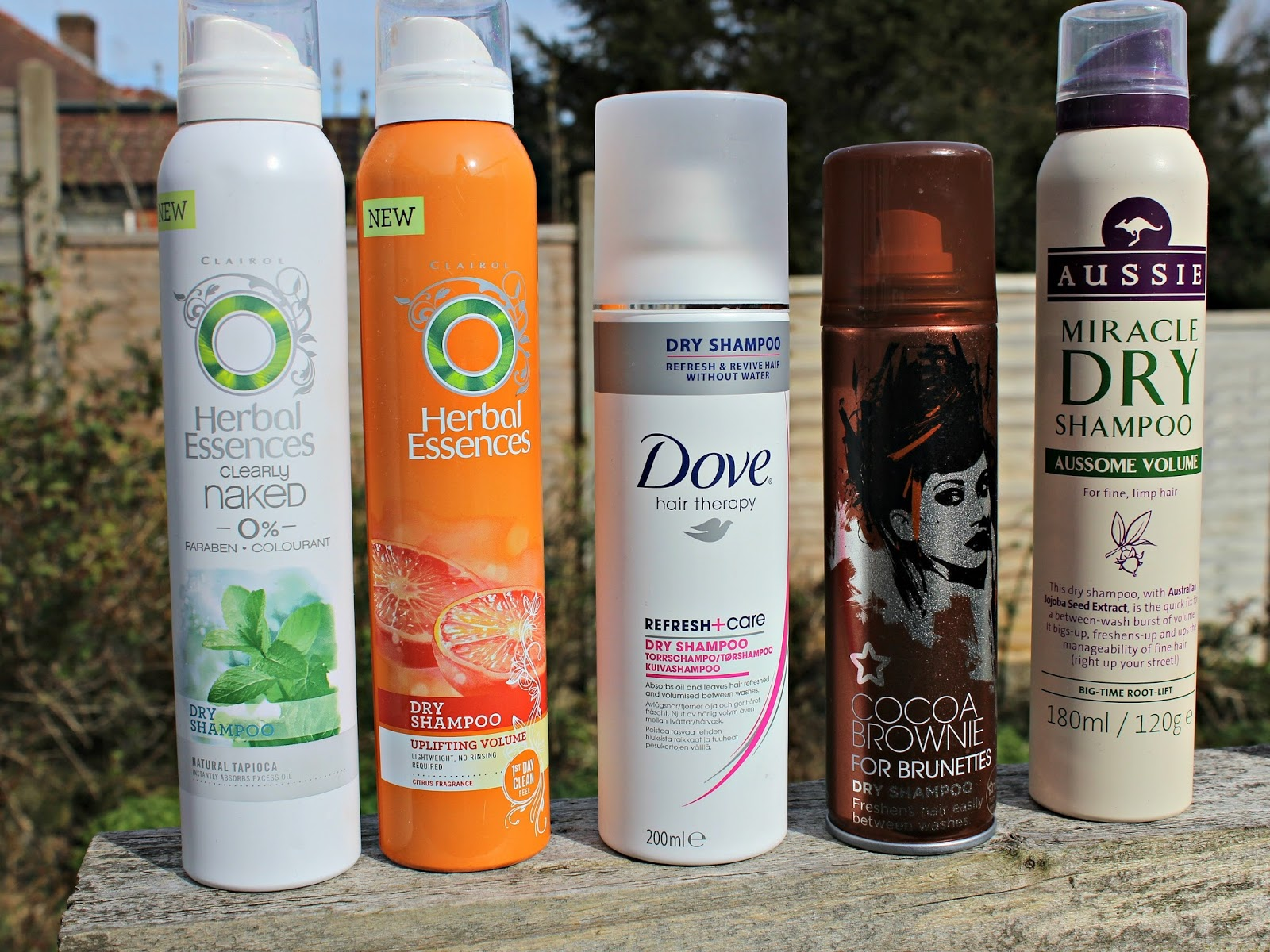 A picture of Dry Shampoos