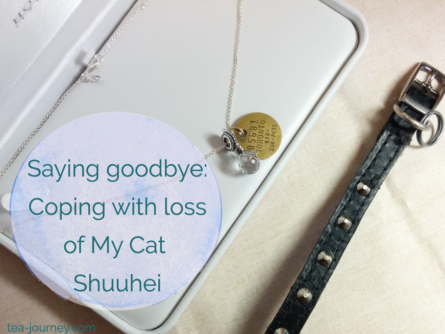 Saying goodbye to a pet is hard. This is how I am coping with the loss of my cat Shuuhei. The original tea cat with a pandora necklace