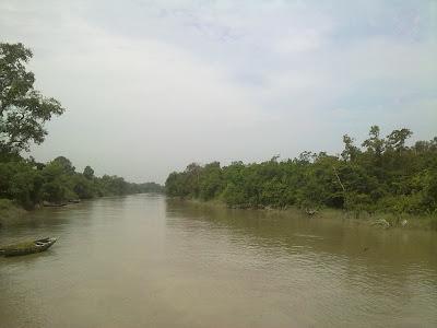 Sundarban mangrove forest River