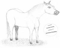 Tekening van een paard