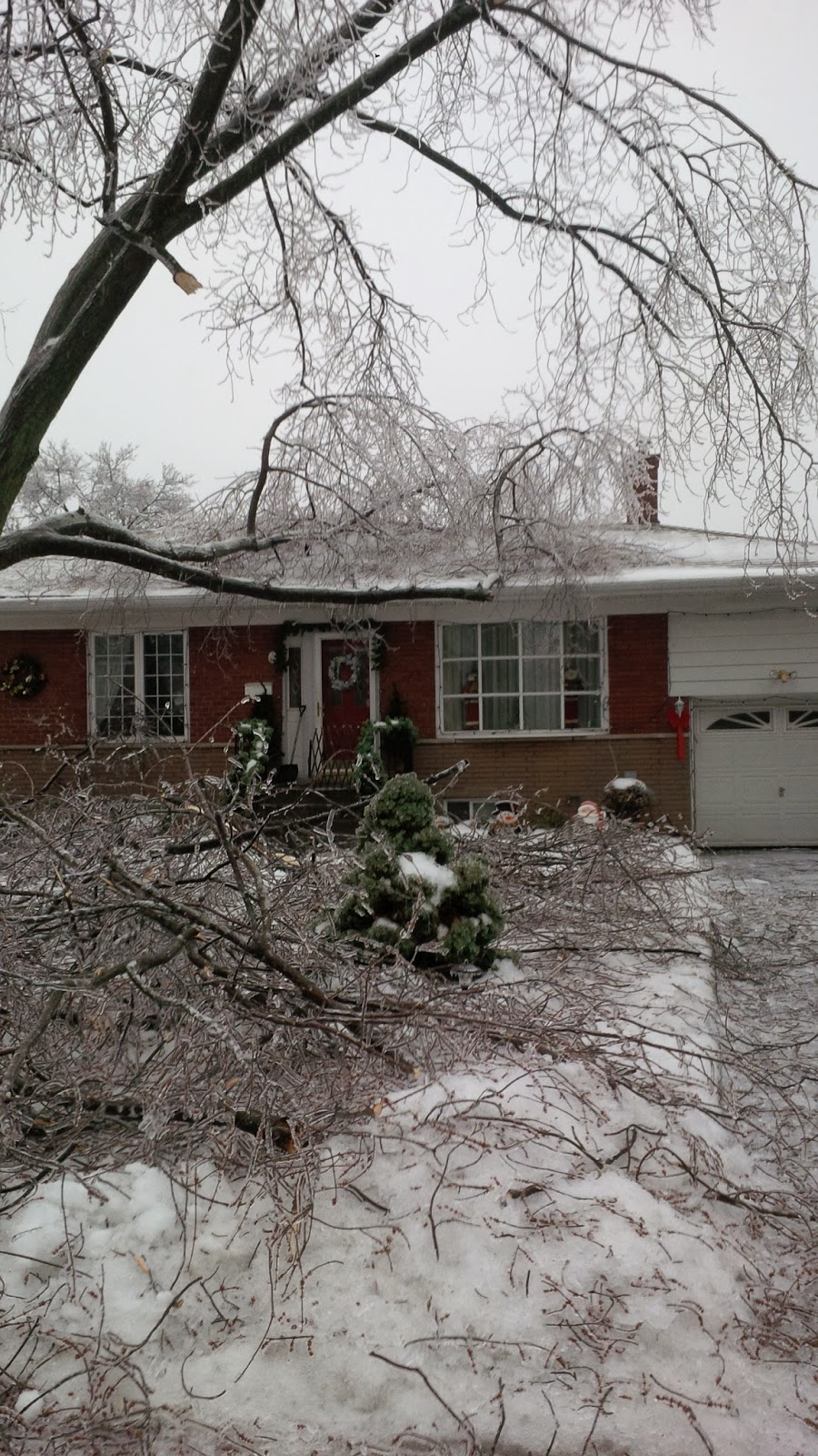ice storm toronto 2013 tree falls on house