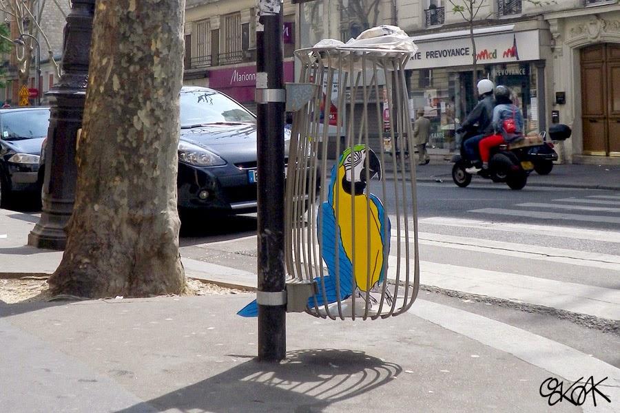 14-Perroquet-The-Parrot-OakOak-Street-Art-Drawing-in-the-City-www-designstack-co