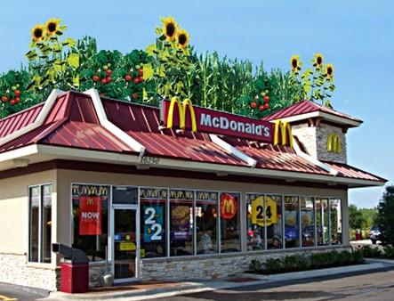 Fast food sebabkan obesitas