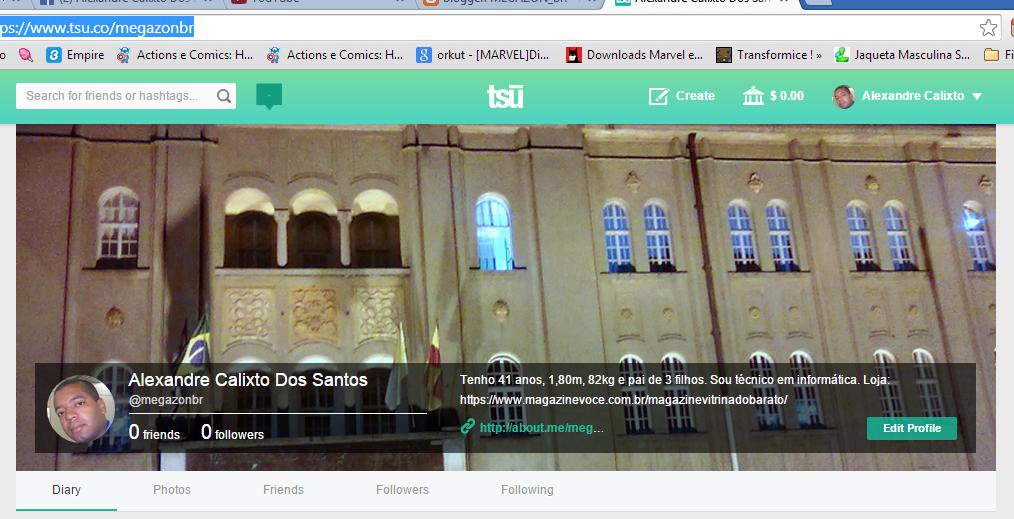 Essa é a imagem inicial do meu perfil no TSU