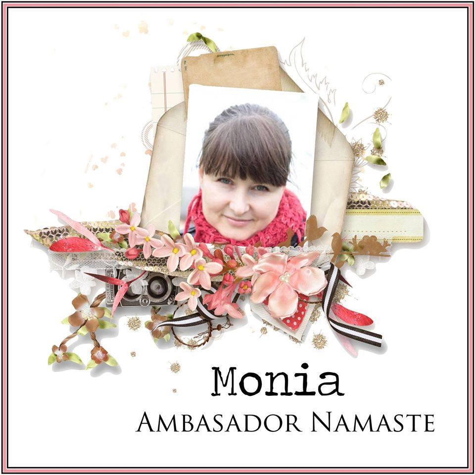 Ambasador Namaste