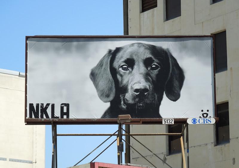 Labrador No Kill LA billboard