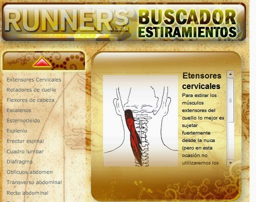 http://www.runners.es/rcs/estiramientos/base.html