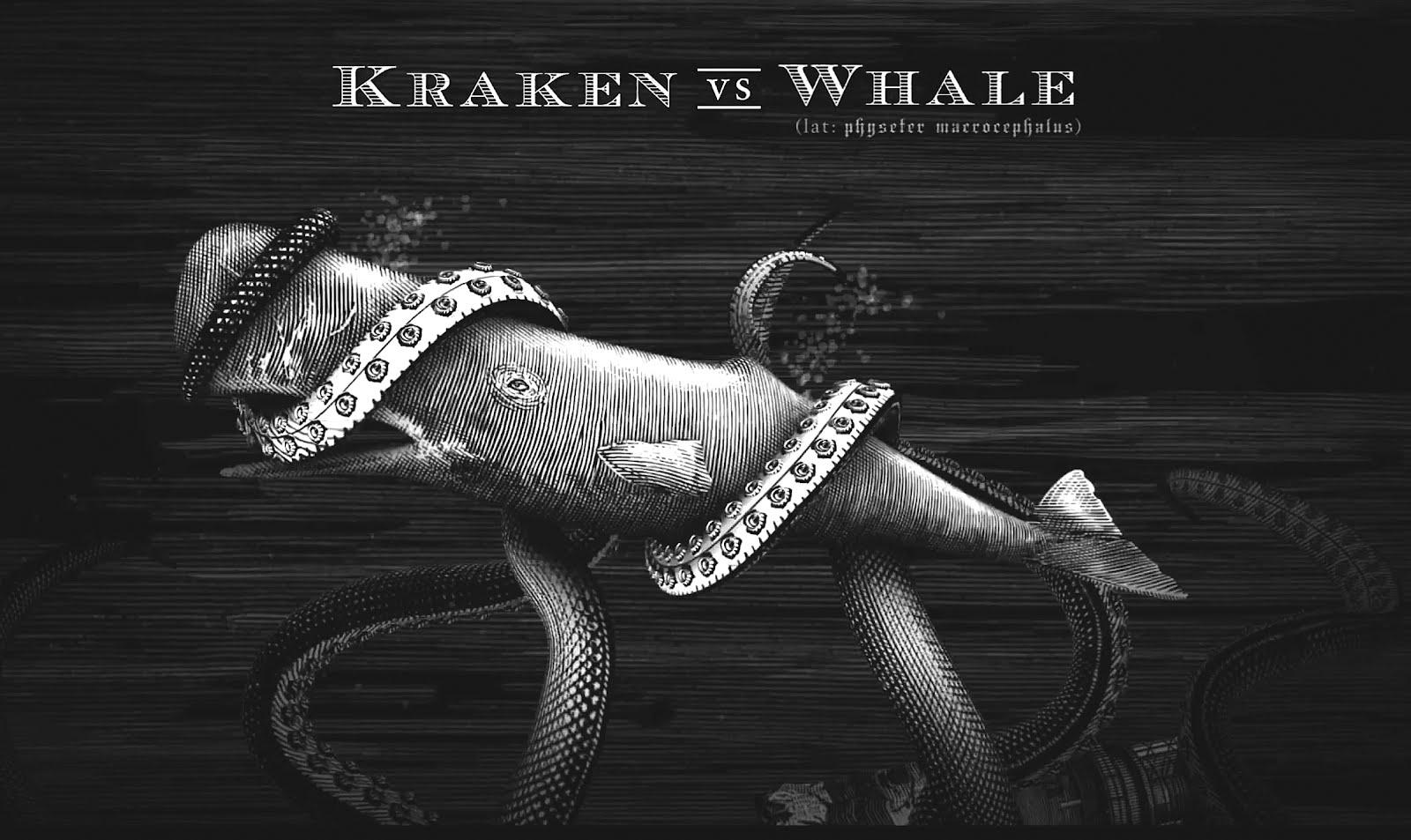 Steven Noble Illustrations: Kraken Rum Animations...