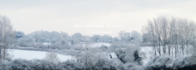 . the rosebank diaries .