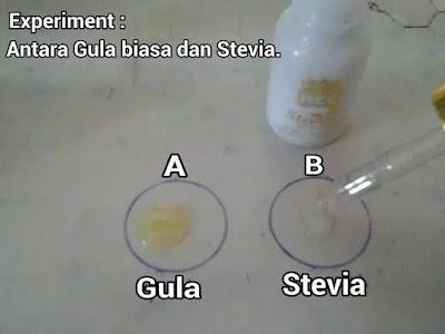 semut vs gula vs stevia