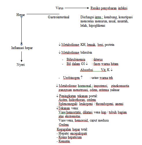 PATOFISIOLOGI HEPATITIS B