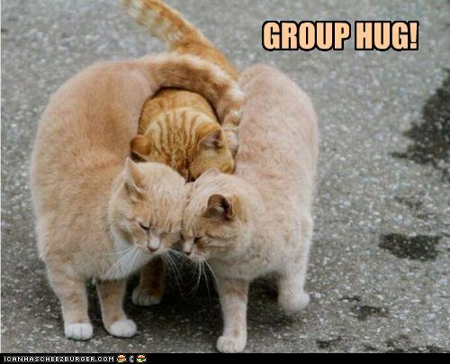 funny-pictures-group-hug.jpg